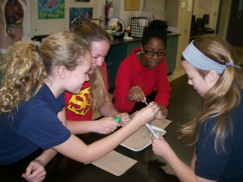 Scientists Zoe Butler, Maureen Egan, Tone'Nae Bradley-Toomer, and Anna Campbell are studying the SSEP Mission 5 mini-lab, to make sure their oxidation microgravity experiment is compliant with specifications.