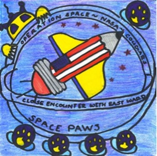 Mission Patches On Mission 4 To The International Space: Downingtown, Pennsylvania Mission Patch 1