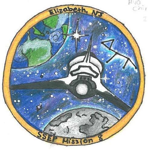 Mission Patches On Mission 4 To The International Space: Mission Patches On Mission 8 To The International Space