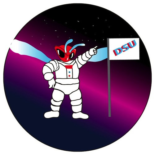 Dover, Delaware, Mission Patch 2