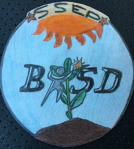 Burleson, Texas Missio Patch 2