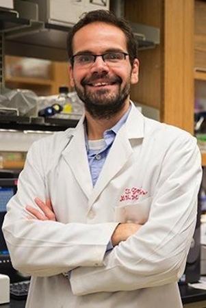 Shaun Brinsmade, Assistant Professor, Department of Biology Georgetown University