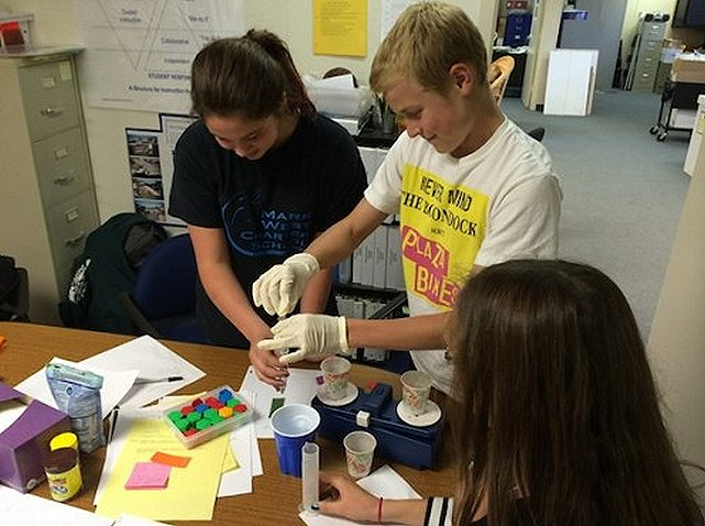 Santa Rosa, California, students working with Triops longicaudatus, or tadpole shrimp. Image Credit: SSEP